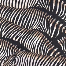 Zebra Heard Original